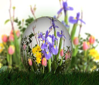 Dary wiosny