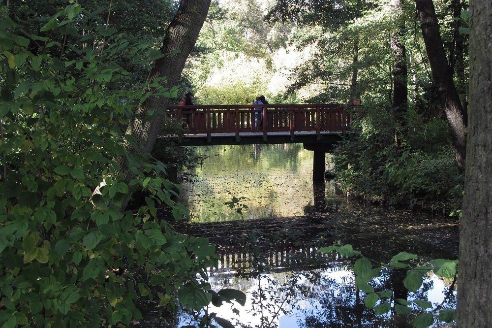 park sołacki poznań