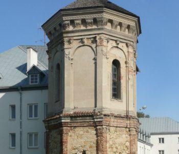 Ruiny zamku Firlejów w Dąbrowicy koło Lublina