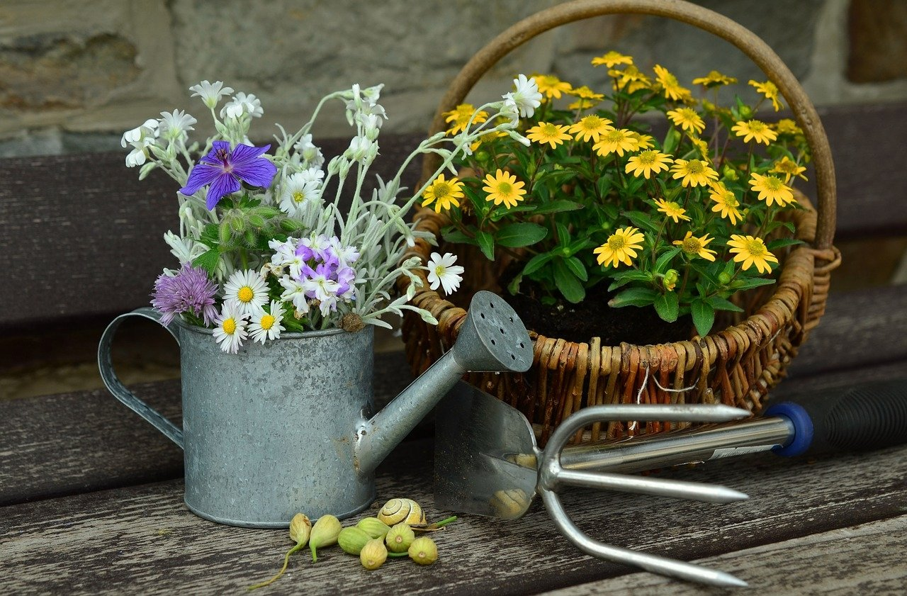 Wiosenne porządki, wierszyk dla dzieci na powitanie wiosny