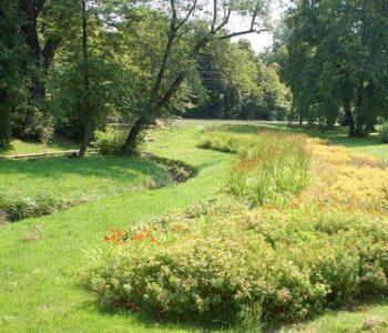 Park Sołacki- to na początek