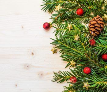 Piosenka kołysanka dla dzieci na Boże Narodzenie, Na strunach igieł, tekst i muzyka