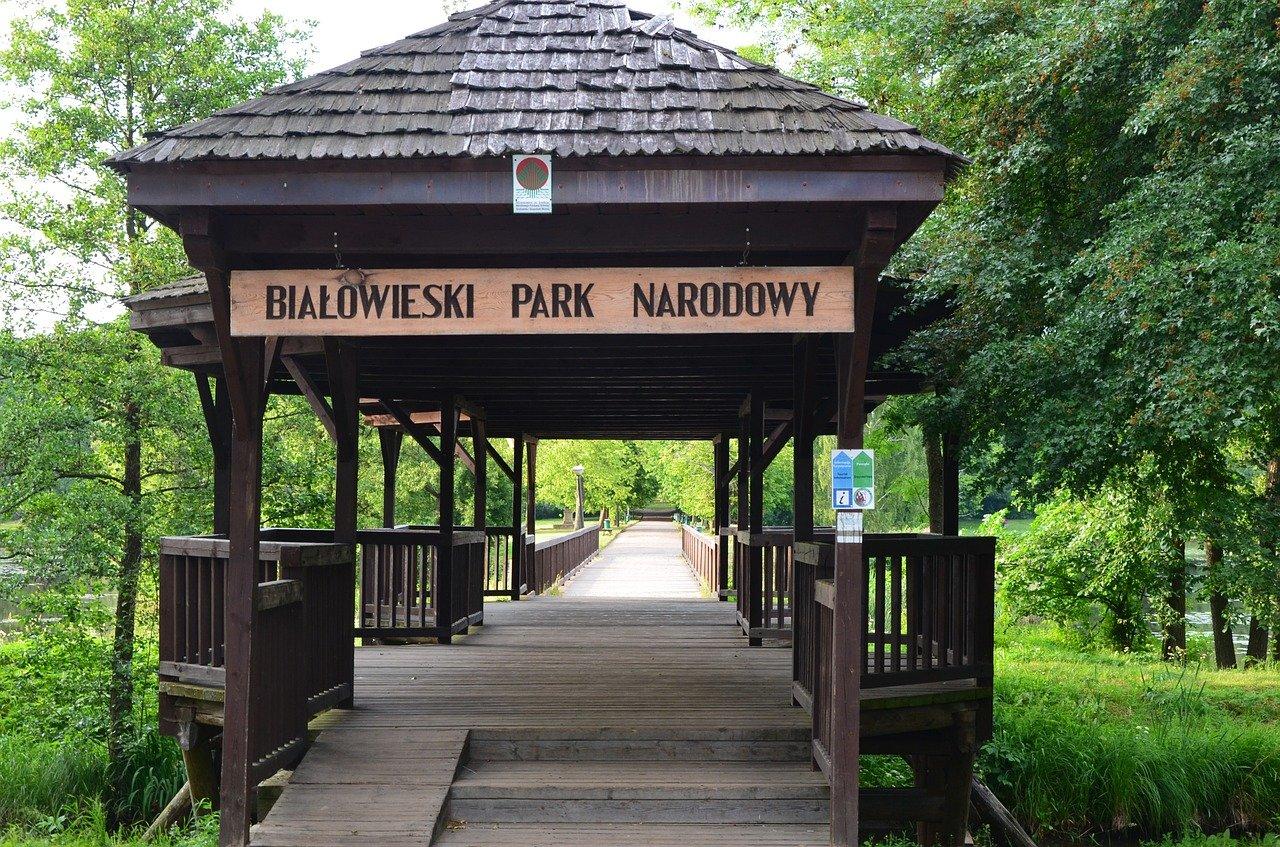 Białowieski Park Narodowy - brama wejściowa