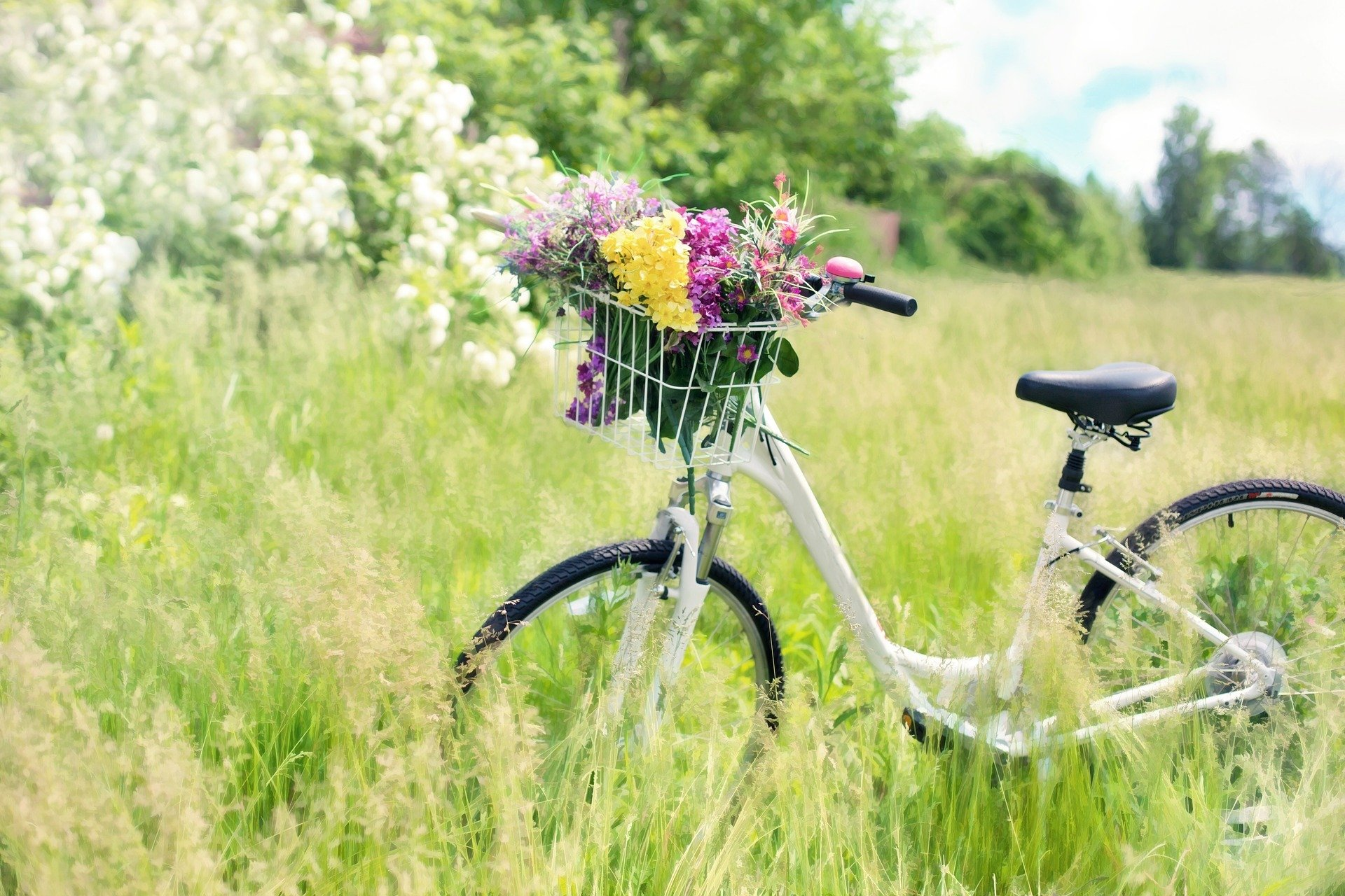 Wiosenny wierszyk dla dzieci, Ogródek Mari Konopnickiej