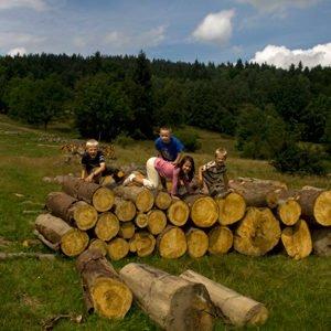Wycieczka na Borówkową Górę