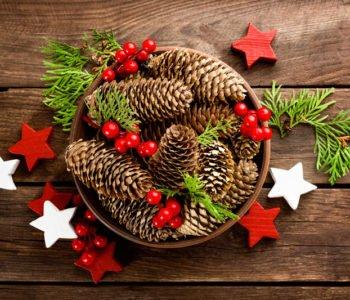 Szyszkowa dekoracja świąteczna