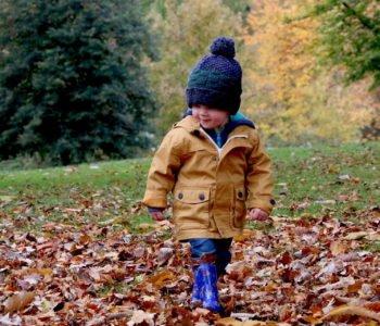Jesień Jesieniucha