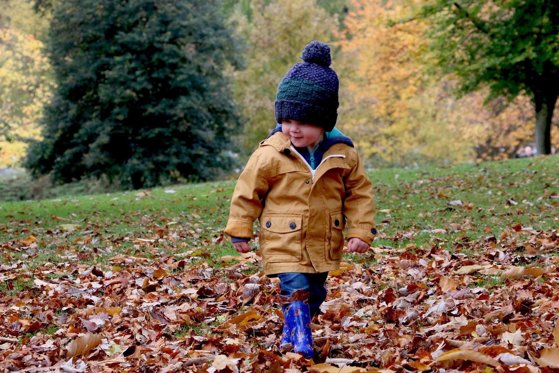 Jesień jesieniucha piosenki dla dzieci na jesień