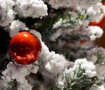Stała pod śniegiem Choinko piękna jak las
