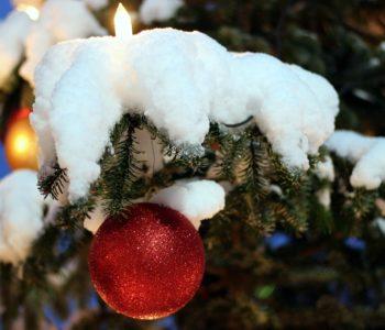 Choinka stała pod śniegiem