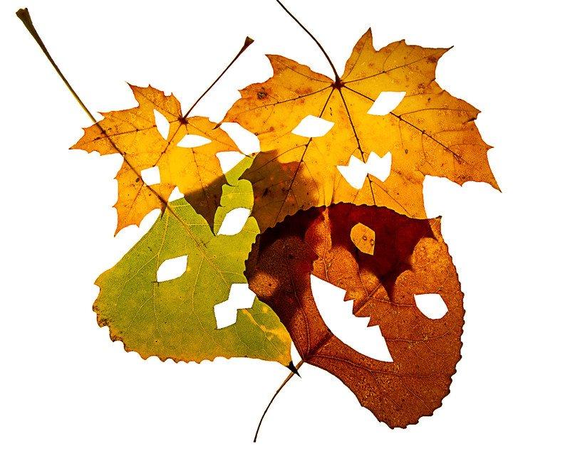 Potworki z liści, zabawy jesienne dla dzieci