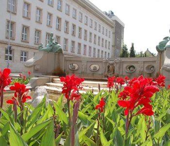Ogródek Jordanowski