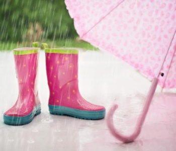 Pada deszczyk