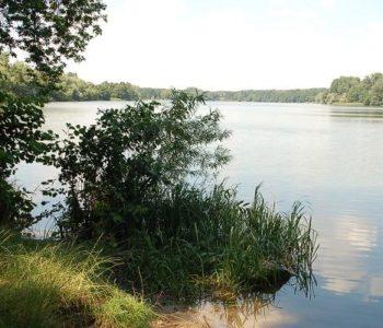 Brzegiem jeziora