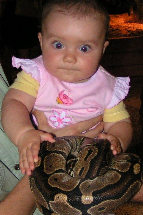 dziecko w Egzotarium z wężem