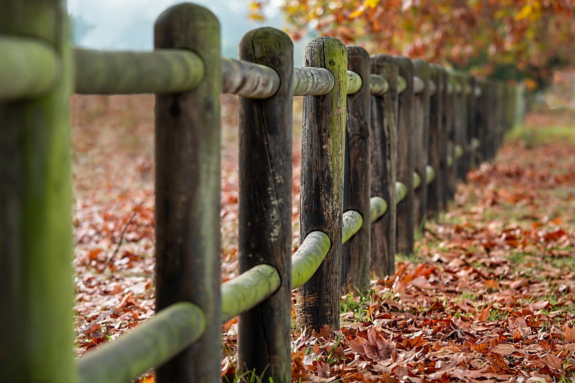 Jesień Na Wsi Wiersz Dla Dzieci Jesienne Piosenki I