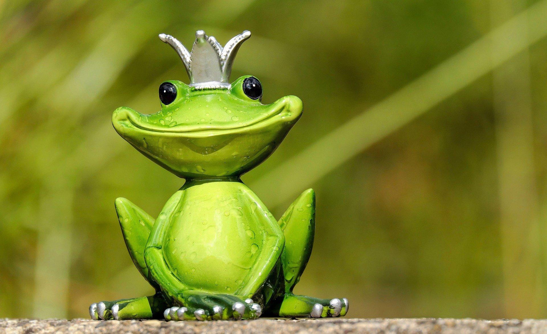 Była sobie żabka mała piosenka i tekst piosenki dla dzieci