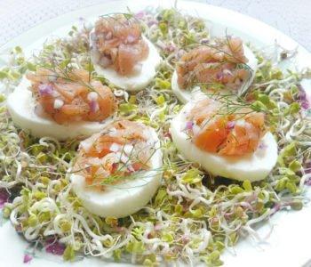 Przepis na jajka faszerowane łososiem