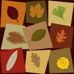 jesienna-orkiestra