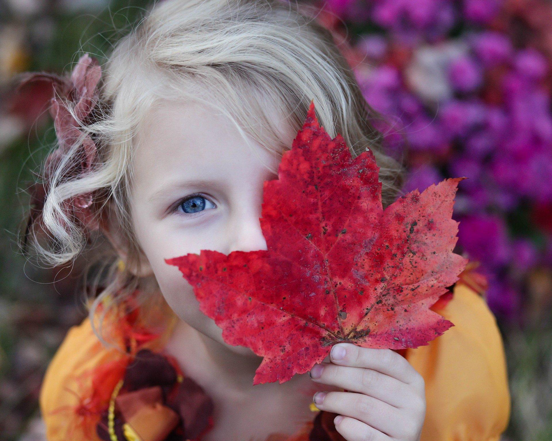 Jesienny kujawiaczek piosenka dla dzieci tekst i melodia
