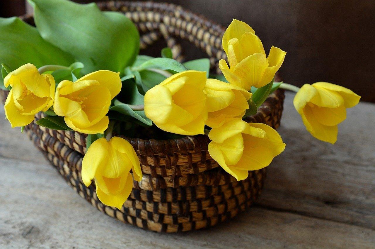 Kwiaty dla dziadka wiersz na Dzień Dziadka