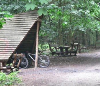 Piknik pod dachem