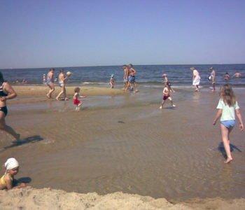 Plaża Brzeżno i ekologia