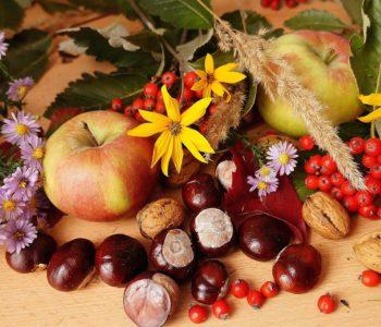 dary jesieni jesień jarzębina kasztany