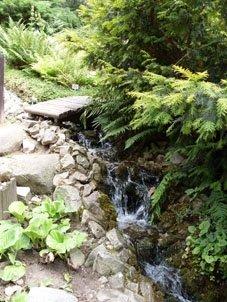 ogrod-botaniczny-umcs-w-lublinie