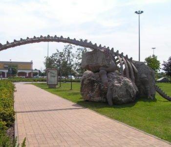 Pod dinozaurem