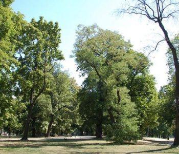 Park Henryka Dąbrowskiego