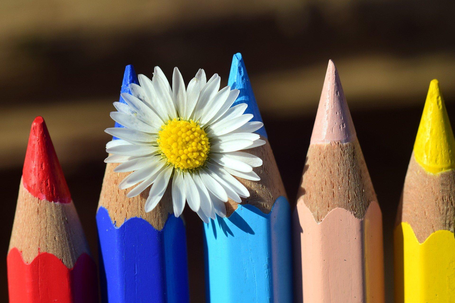 Kolorowe kredki piosenka dla dzieci, tekst i melodia