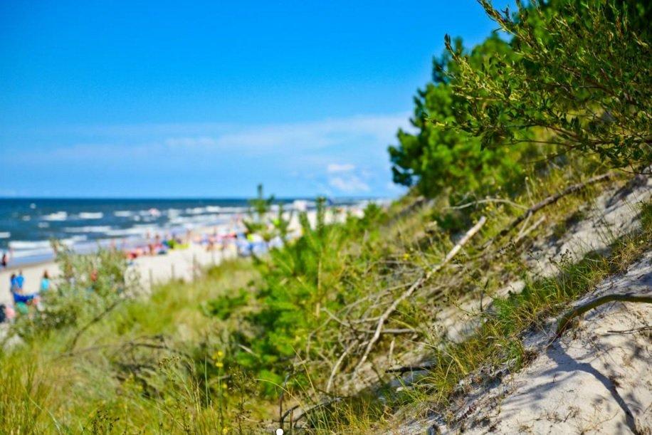 Widok na wydmę i plażę w Pogorzelicy