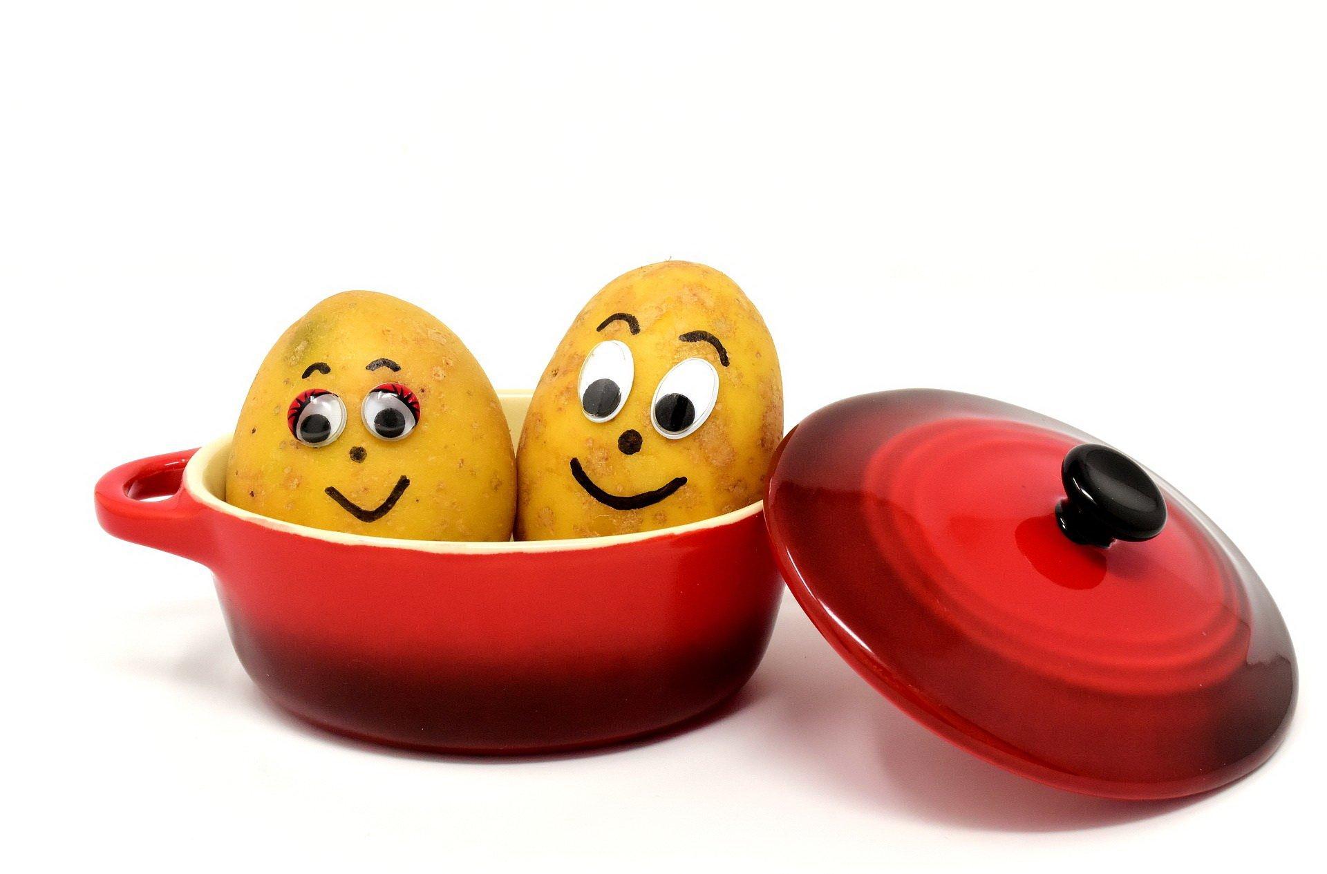 Kartofelki wierszyk dla dzieci na Dzień Ziemniaka
