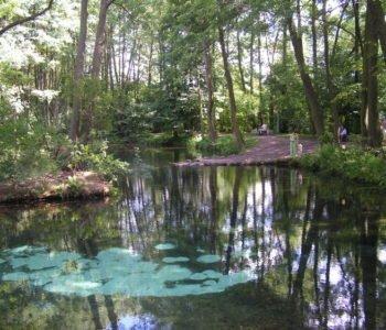 Rezerwat Niebieskie Źródła i Skansen Rzeki Pilicy