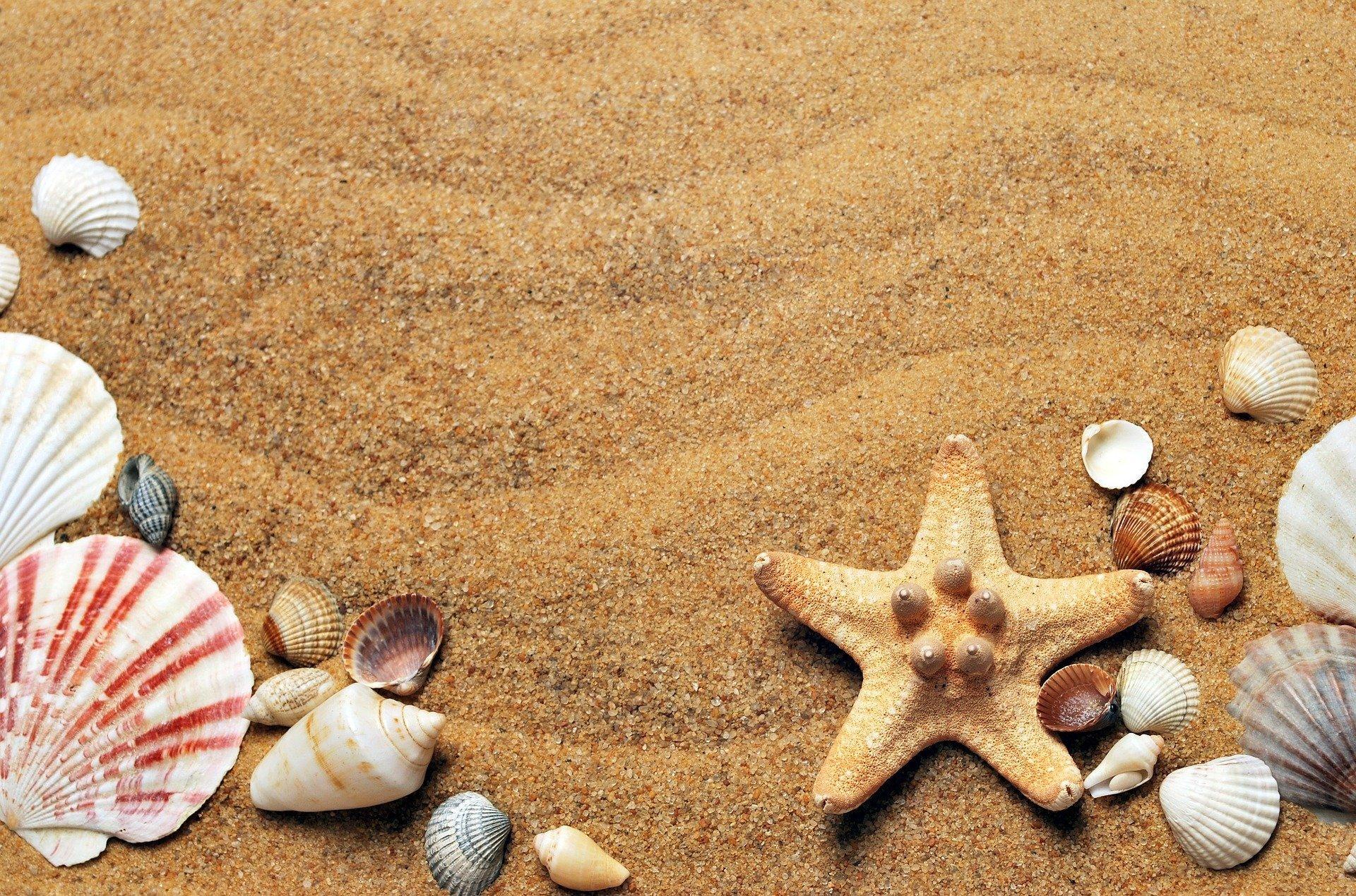 Niech żyją wakacje, piosenka na lato dla dzieci tekst i melodia