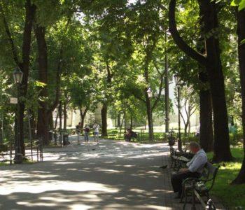 Wzdłuż ulicy Westerplatte