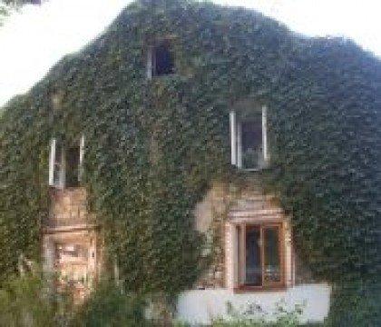 Stary dom obrośnięty bluszczem