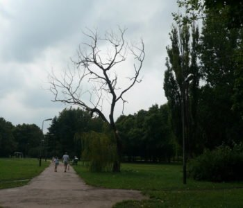 Park im. gen. Jarosława Dąbrowskiego