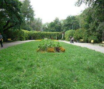 Park przy Leczniczej
