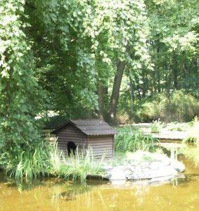 Staw i tajemniczy domek
