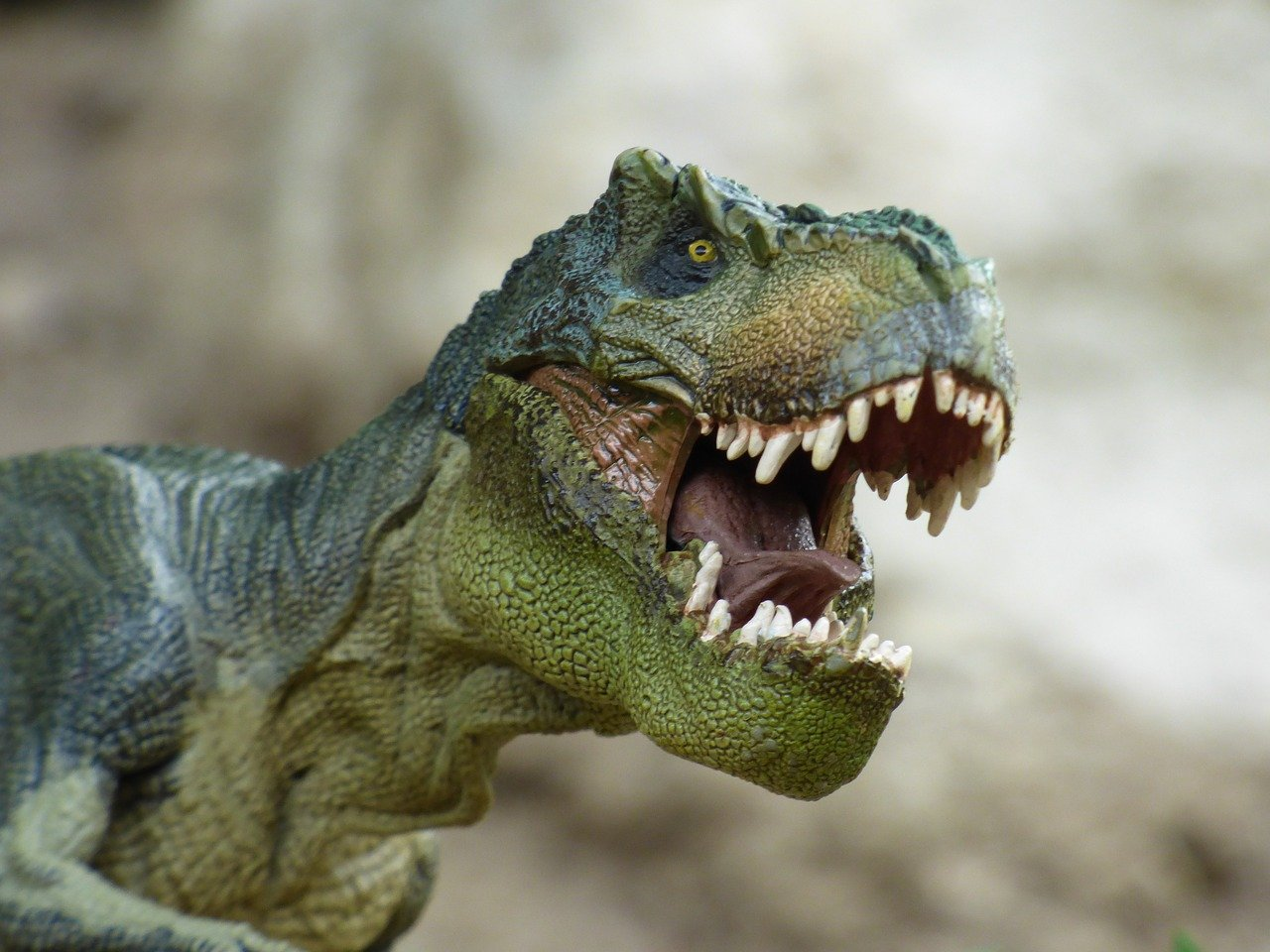 dinozaur pixabay