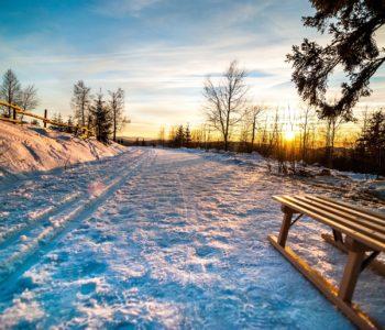 Jedzie grudzień, piosenka dla dzieci na zimę