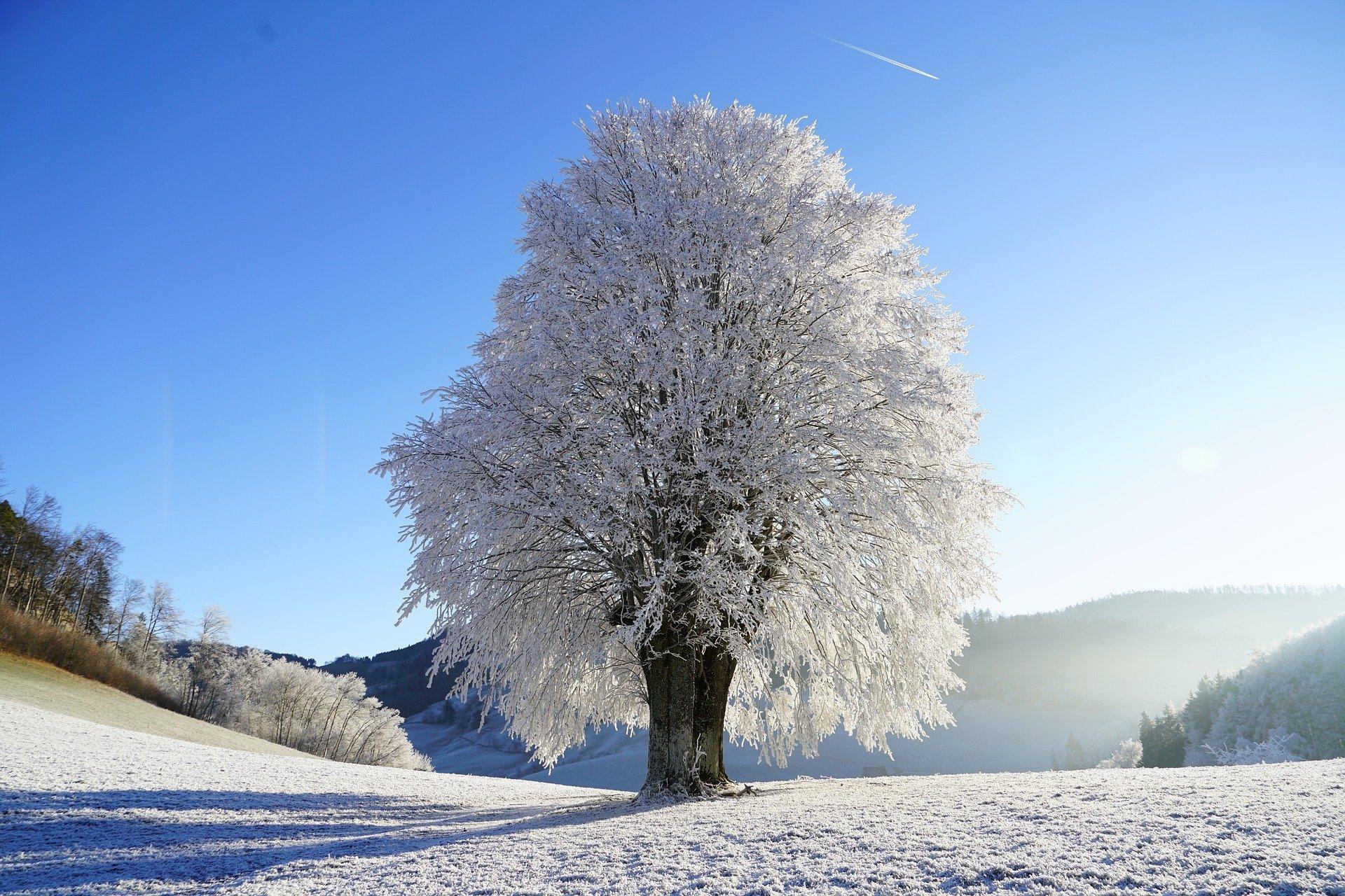 Mroźna zima, wierszyk dla dzieci o zimie
