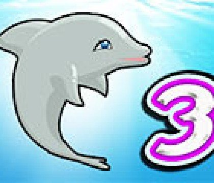 58My-Dolphin-Show-3