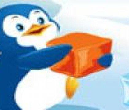 Pingwiny i kostki lodu