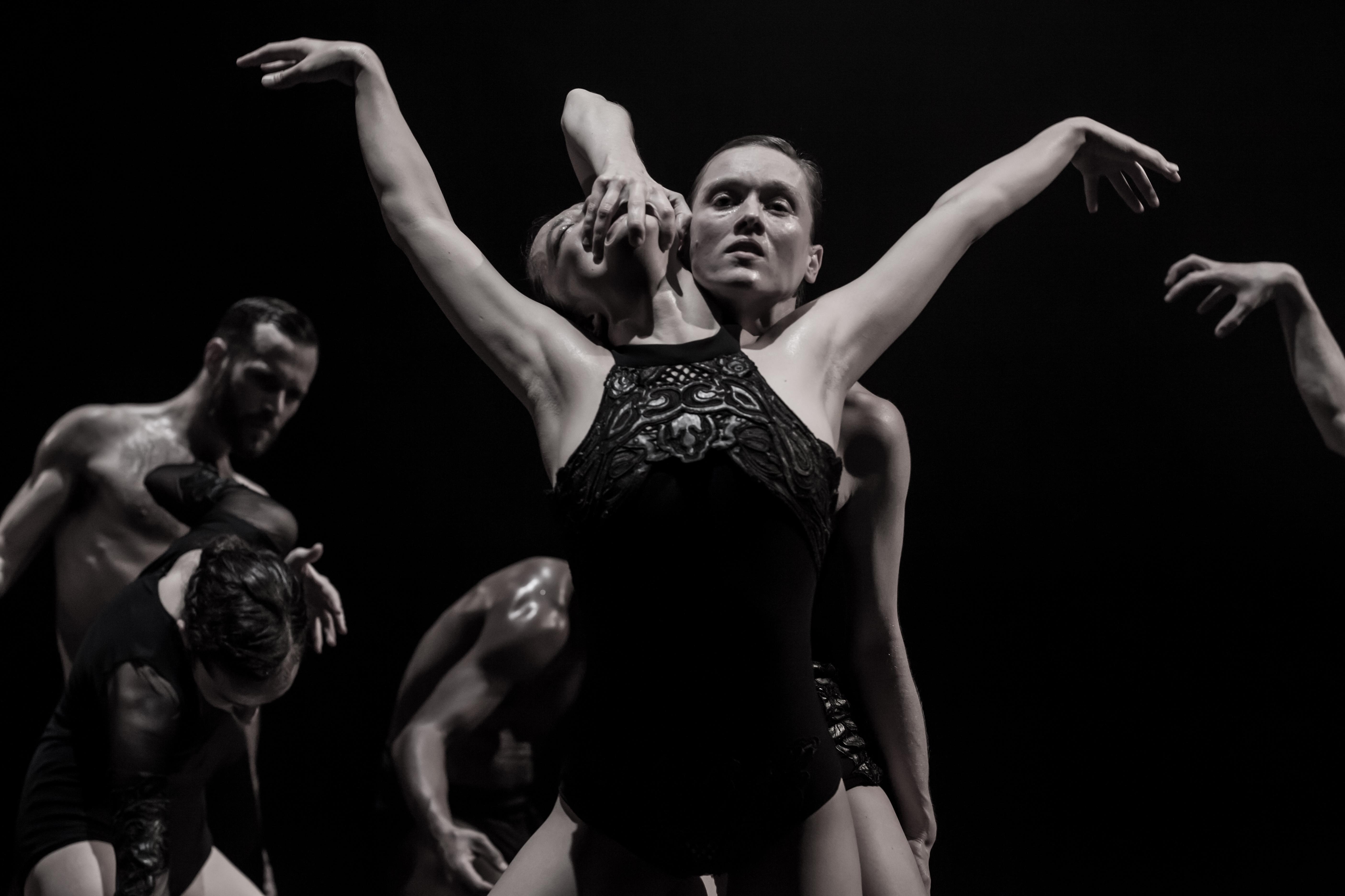 Międzynarodowy Festiwal Tańca Współczesnego KRoki 2016