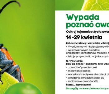 Wypada poznać owada - edukacyjna wystawa w Zielonych Arkadach w Bydgoszczy