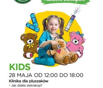 Klinika dla pluszaków w Krasnem