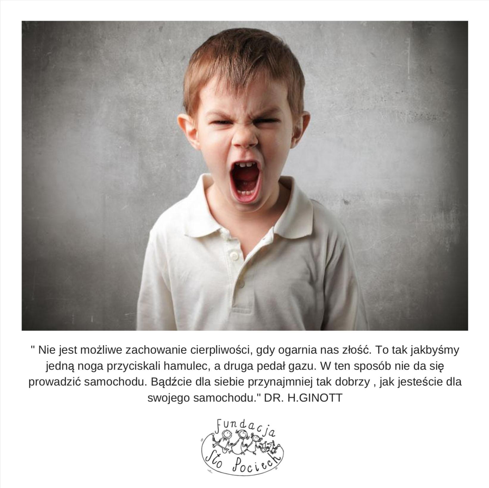 zlosc sto pociech warsztaty dla rodziców moje dziecko mnie złoście rodzicielstwo